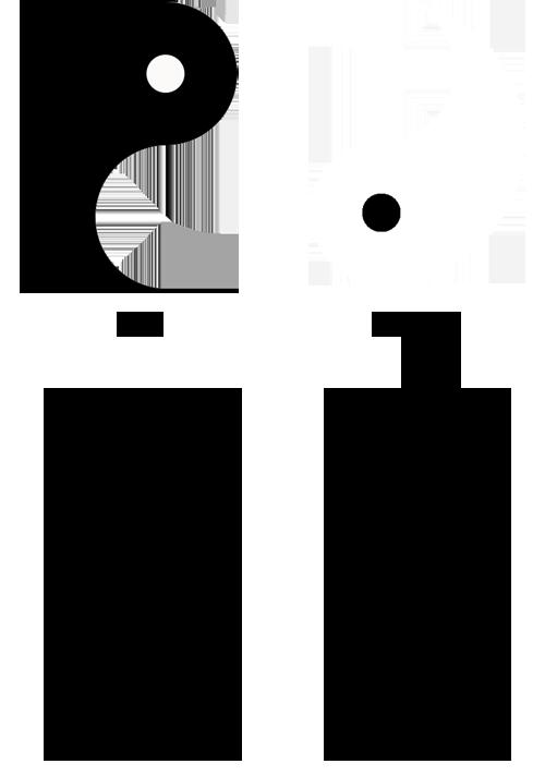 características yin e yang