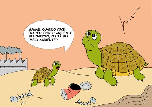 tartarugas de Léo Valença