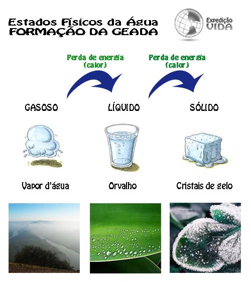 Expedição Vida - estados da água - formação da geada
