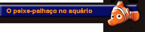 Expedição Vida - o peixe-palhaço no aquário