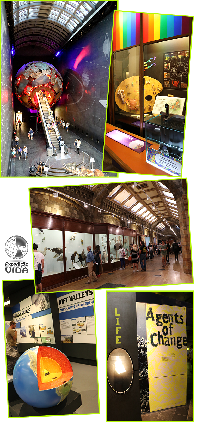 expedicao-vida-museu-historia-natural-londres-5