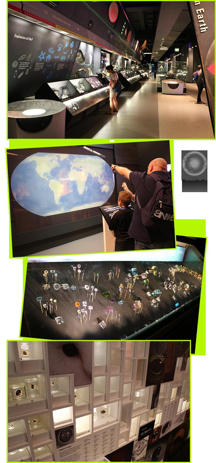 expedicao-vida-museu-historia-natural-londres-6